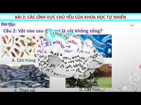 Bài 2: Các lĩnh vực chủ yếu của khoa học tự nhiên (tt)