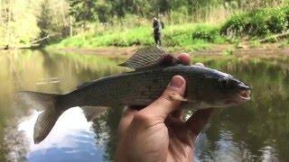 Рыбалка на красная калининградской области презентация