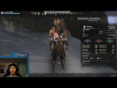 BUILD VID] Stam Warden -