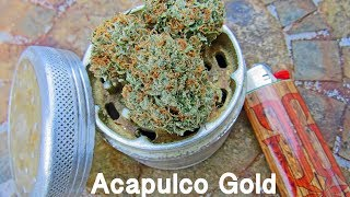 Acapulco Gold   Cannabis Strain Review