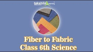 Class 6 Science