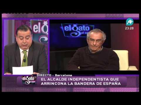 ALCALDE GALLIFA EL GATO AL AGUA 6 2 2013