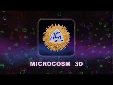 Video of Science - Microcosm 3D