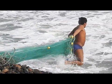 La pesca sottacqua al mare di video
