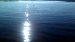 Рыбинское водохранилище. ловля сома на