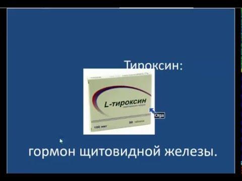 Рублевские таблетки похудение