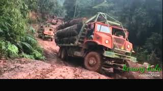 V10 HardCore Logging Truck | Muddy Road After Raining | Difference Japanese And European Engine