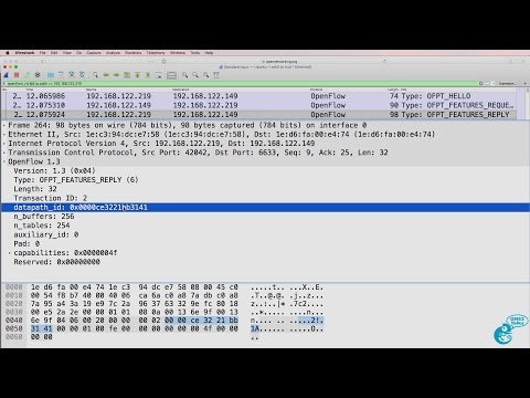 GNS3 Talks: OpenFlow captures using Wireshark, Docker containers, OpenDaylight, SDN