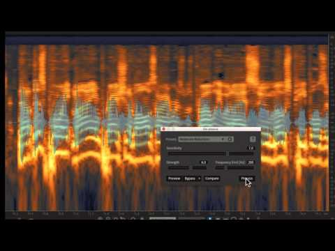 IZOTOPE RX 6 STANDARD: THE INDUSTRY STANDARD FOR AUDIO REPAIR