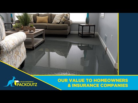 , title : 'Blue Kangaroo Packoutz Franchise - Our Value To Homeowners & Insurance Companies