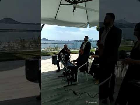 Professional Quartet Quartetto di musica classica. Napoli Musiqua