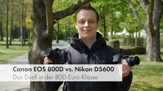 Canon EOS 800D/77D vs. Nikon D5600 | Gehobene Einsteiger-DSLRs im Vergleich [Deutsch]