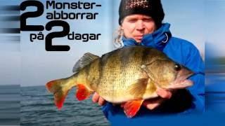 Озеро тишкин сор тюменская область рыбалка