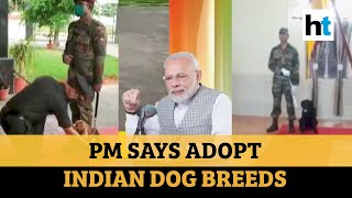 Watch: PM Modi hails Army dogs who sniff out bombs, says adopt Indian breeds - Download this Video in MP3, M4A, WEBM, MP4, 3GP