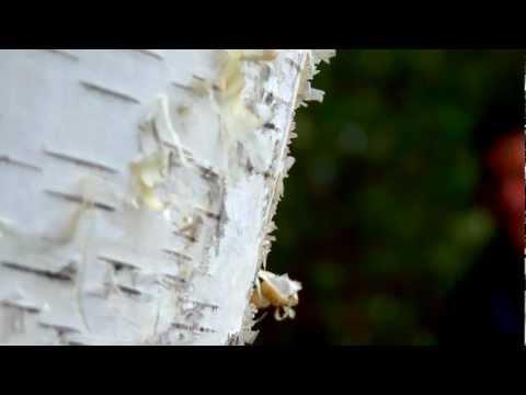 Majex - MAJEX INSTRUMENTALS 2012 - CALM (music video) HD