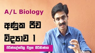 A/L Molecular Biology and Recombinant  DNA Technology – Lesson 1 වර්ණදේහවල ව්‍යුහ නිර්මාණය