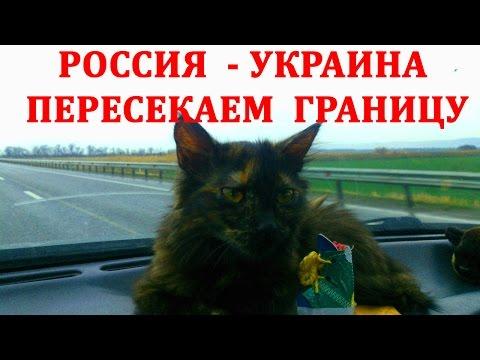 ПЕРЕСЕЧЕНИЕ ГРАНИЦЫ РОССИЯ УКРАИНА / БЕЛГОРОД / ПЕРЕВОЗКА ЖИВОТНЫХ / ШЕБЕКИНО ПЛЕТЕНЕВКА