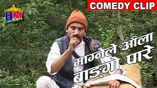 माग्नेले औला बाङगो पारे  || Nepali Comedy