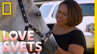 A Day on the Farm | Love & Vets