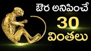 Top 30 Unbelievable Facts That You Never Know   Top Most Amazing Facts   Unknown Facts Telugu