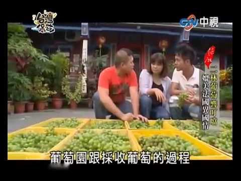 蘭輝酒莊-自然釀造葡萄酒-台灣保庇電視專訪