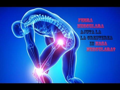 Medicamente pentru inflamația articulațiilor umărului