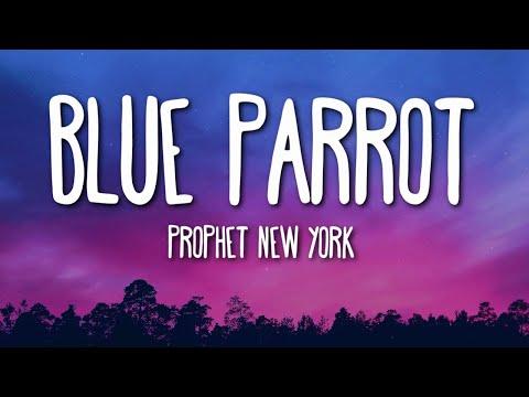 Prophet New York - Blue Parrot (Lyrics) 🎵