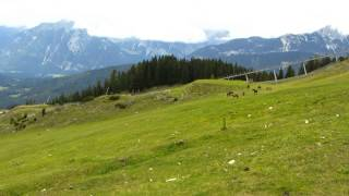 preview picture of video 'Zwei Läufe in Seefeld in Tirol am 14.09.2014'