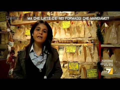 Nella quale farmacia il martello Torah è in vendita
