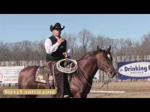 Trotting Poles - Steve Lantvit Sneak Peek