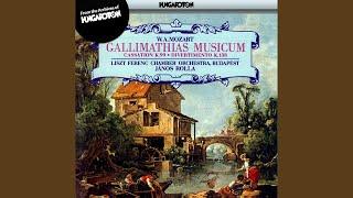 Divertimento in F major K.138 (125c) : I. (Allegro)