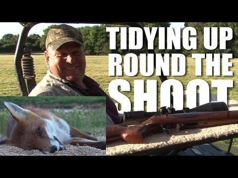 Tidying up around the Shoot
