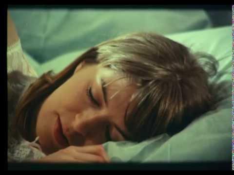 愛の言語から - ヴィンテージスウェーデンの性教育ビデオ1969