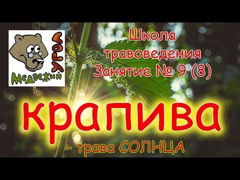 Доска объявлений украина магия