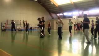preview picture of video 'Stage de savate forme à Cognac le 08/12/2103 dirigé par Florence LECCESE'