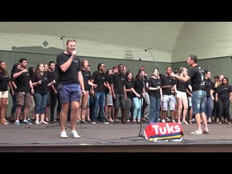 World Choir games 2014. Riga. Vermanes darza. University of Pretoria Camerata (12.07.2014 no 14.00)