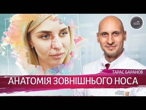 Анатомия Лица для Косметологов ► Анатомия наружного носа