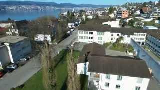 preview picture of video 'Störche in Meilen (ZH) - 6. April 2015'