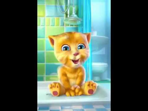 Che fare se in un gatto striscia