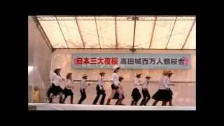 TushPush2009高田百万人観桜会