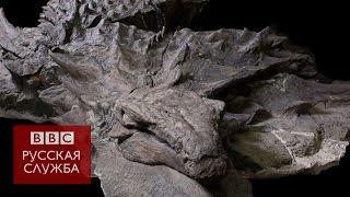 Идеально сохранившийся динозавр, которому 110 млн лет