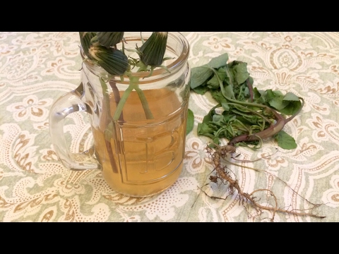 Video Dandelion Herbal Tea and Potential Benefits