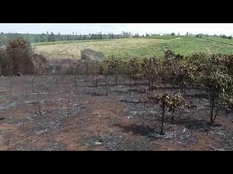 Área queimada em Barra da Estiva - janeiro de 2018 part 3