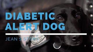 Diabetic Alert Dog: Jean's Story