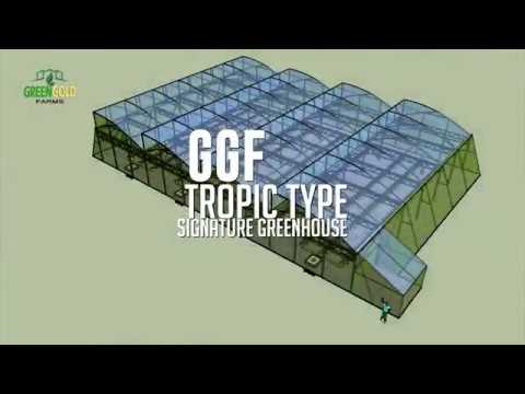 Greenhouse with Automated Shade Screen + Dutch Bucket System Design