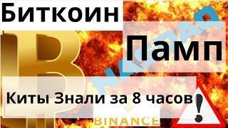 Памп Биткоина Киты Знали за 8 часов , сжигание 5000000 binance coin и Bitcoin - Nasdaq уже связка