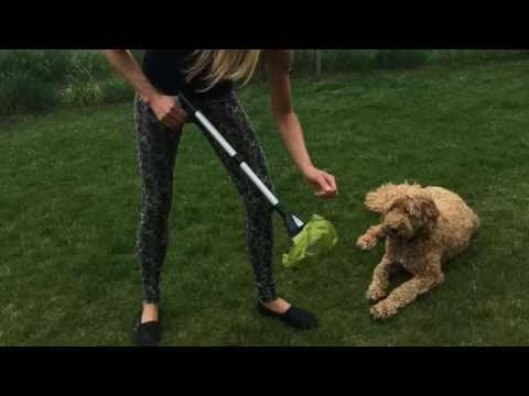 Best Pooper Scooper for Dogs Both Large & Small - Dadson Hea