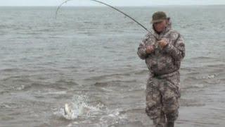 Диалоги о рыбалке. Охотское море. Кумжа