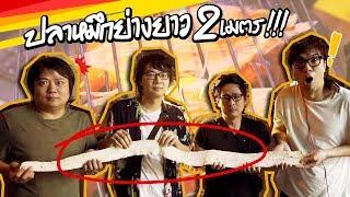 ปลาหมึกย่างยาว 2 เมตร!!! (By Nissin)