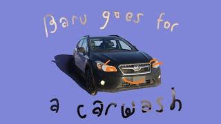Baru Goes for a Car Wash